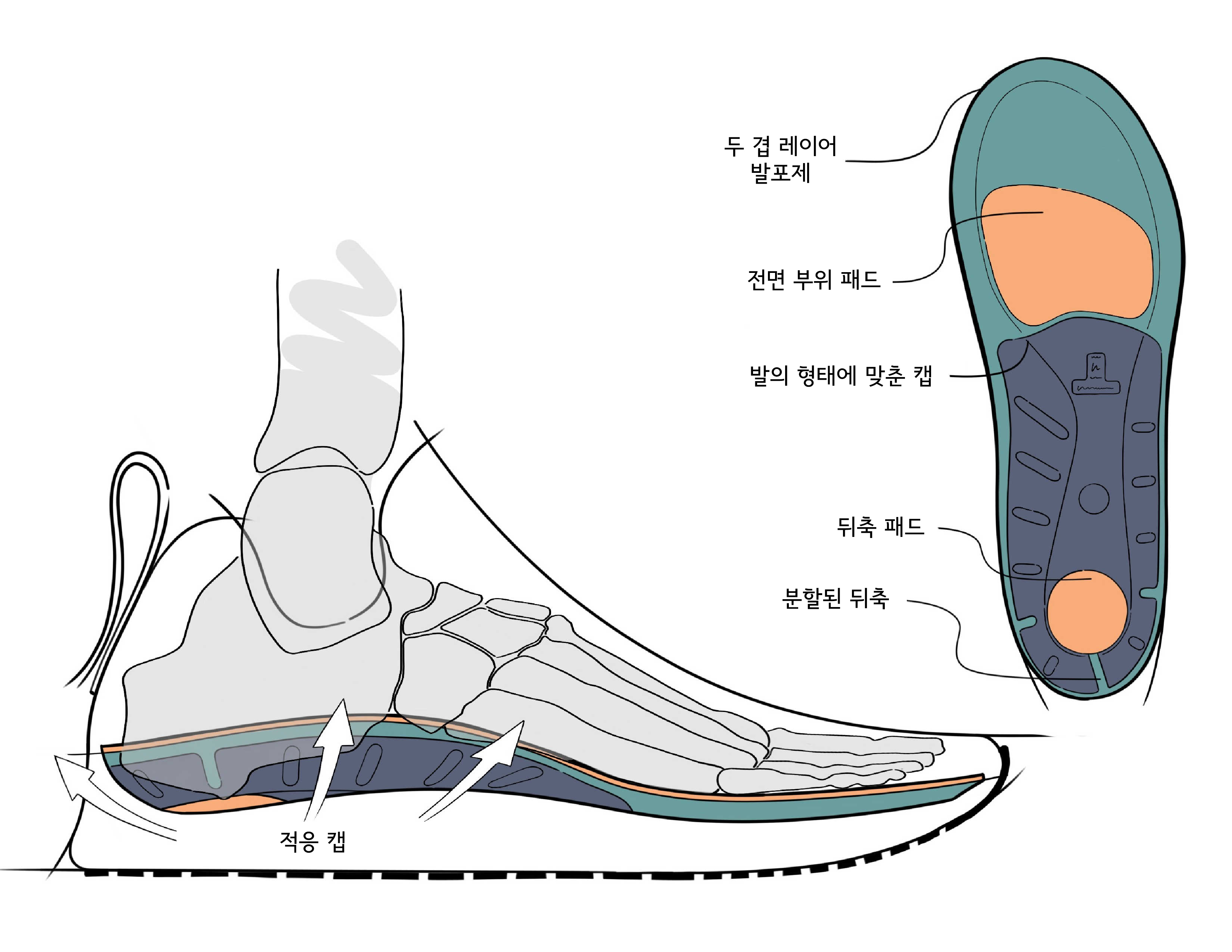 ADAPT_Sketch_in_Shoe_cropped